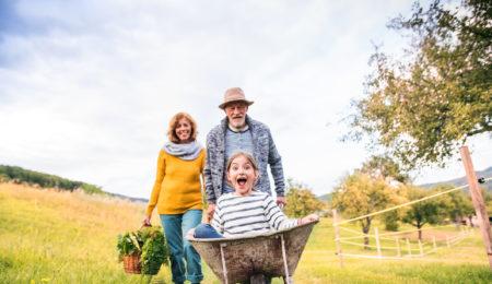 Senior couple with grandaughter gardening in the backyard garden.