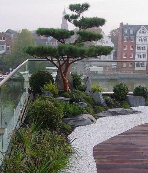 jardin-japonais-terrasse