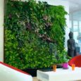 98512e599e_99682_mur-vegetal-interieur