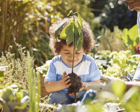 Grandmother and cute little boy gardening outdoors